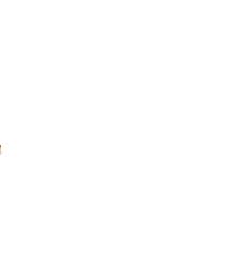 david wilson homes logo